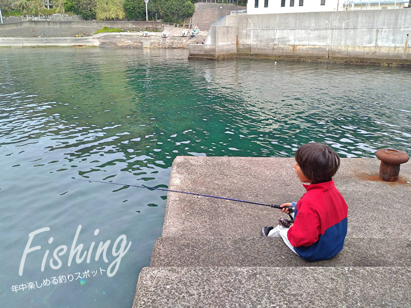 slide_visual_fishing00a